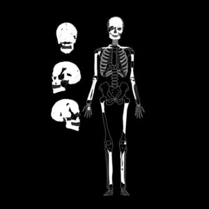 AB: Antropología Biológica